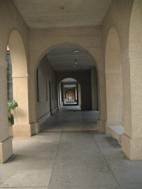 "One exterior ""hallway"" in the LSU quadrangle by the library"