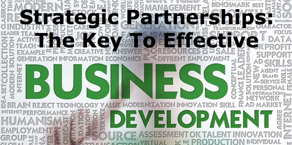 239 Strategic Partnerships: The Key To Effective Business Development
