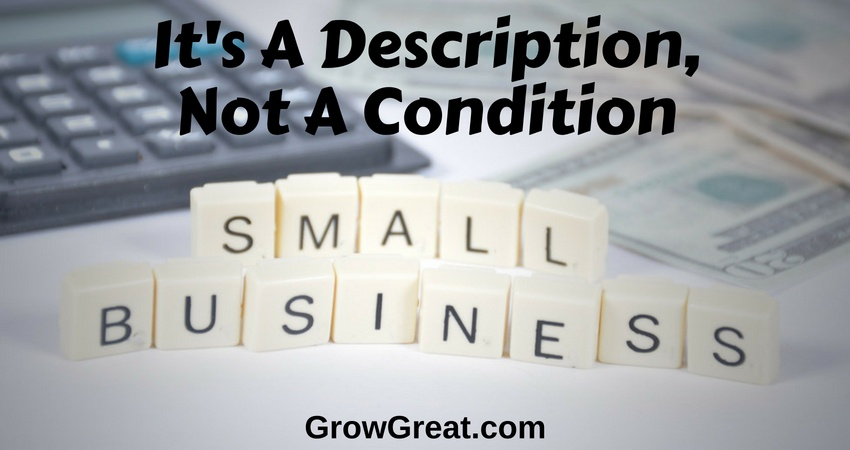 Small Business Is A Description, Not A Condition