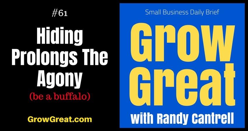 Hiding Prolongs The Agony (be a buffalo) – Grow Great Small Business Daily Brief #61 – August 15, 2018