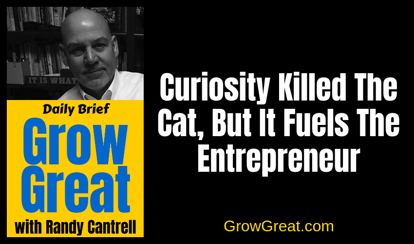 Curiosity Killed The Cat, But It Fuels The Entrepreneur – Grow Great Daily Brief #132 – January 10, 2019